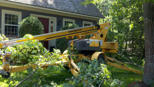 Southern Maine Tree Services